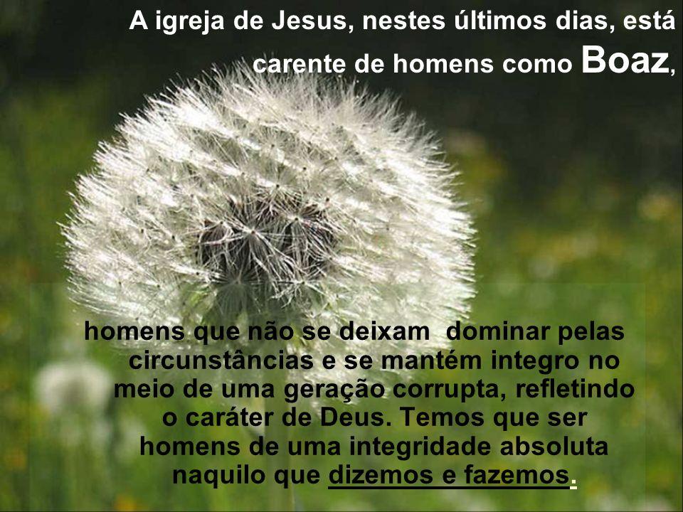 A igreja de Jesus, nestes últimos dias, está carente de homens como Boaz,