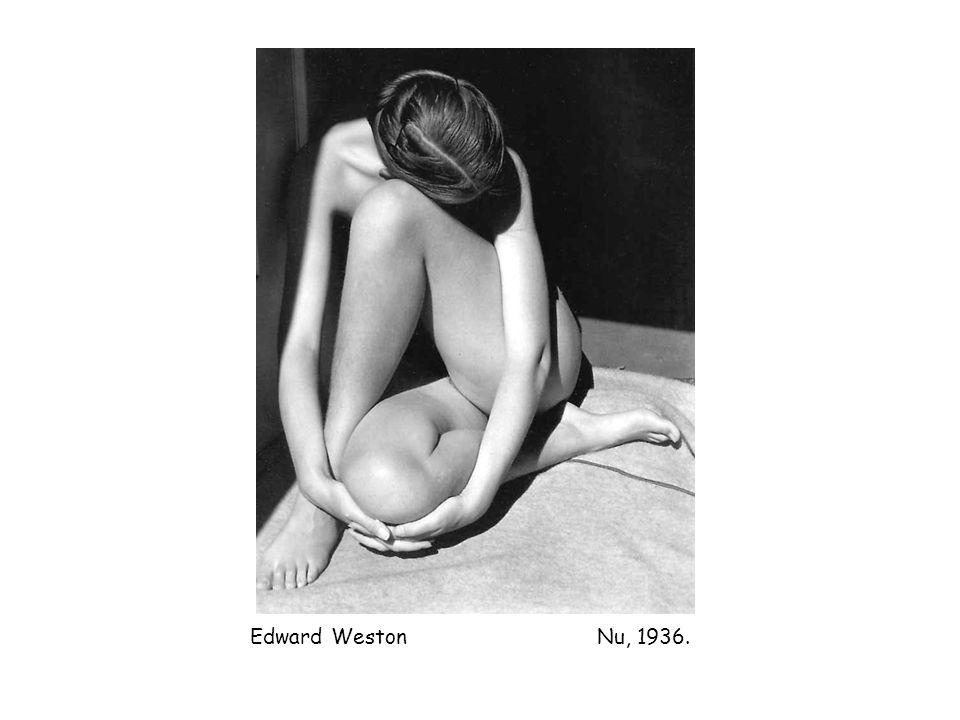 Edward Weston Nu, 1936.