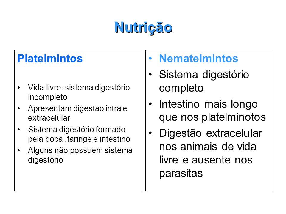 Nutrição Platelmintos Nematelmintos Sistema digestório completo