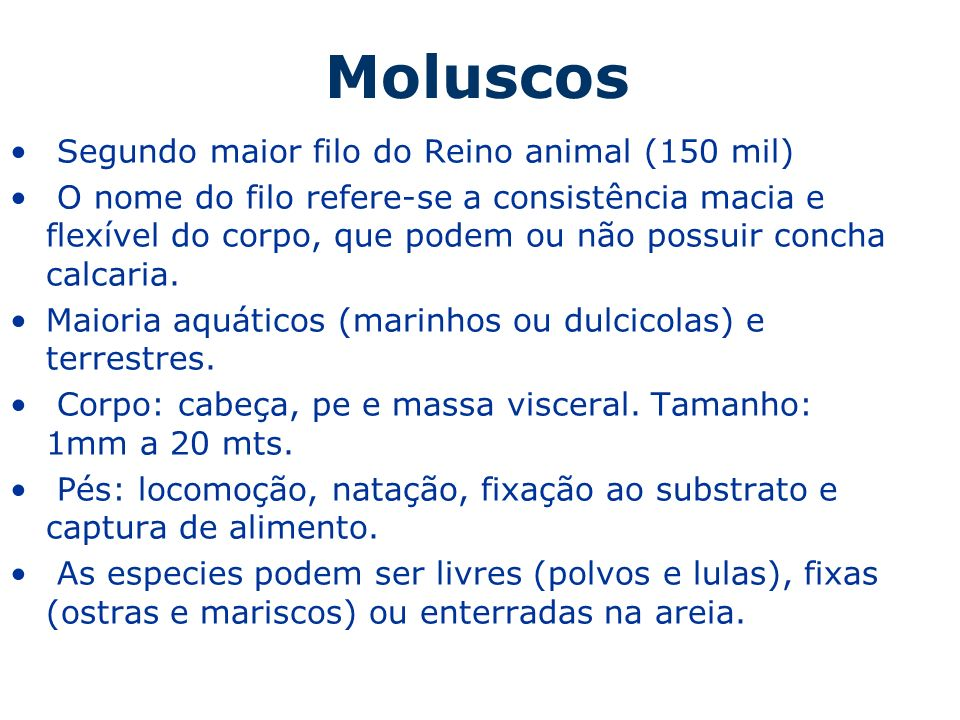 Moluscos Segundo maior filo do Reino animal (150 mil)