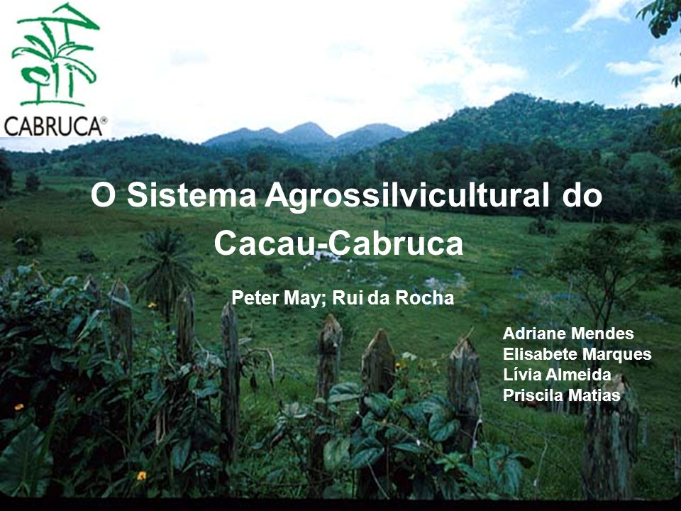O Sistema Agrossilvicultural do Cacau-Cabruca