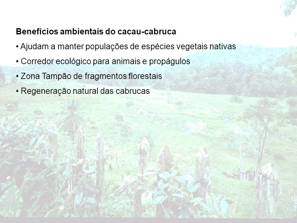 Benefícios ambientais do cacau-cabruca