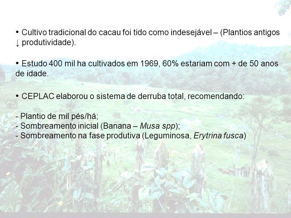 CEPLAC elaborou o sistema de derruba total, recomendando: