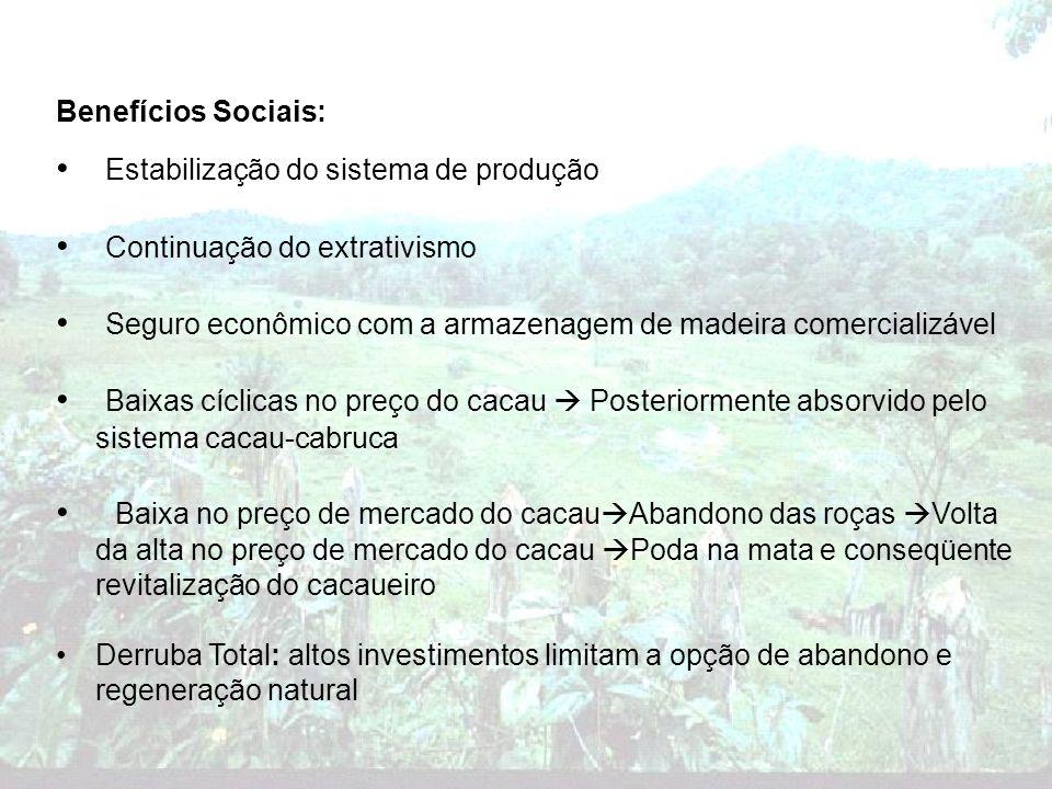 Estabilização do sistema de produção Continuação do extrativismo