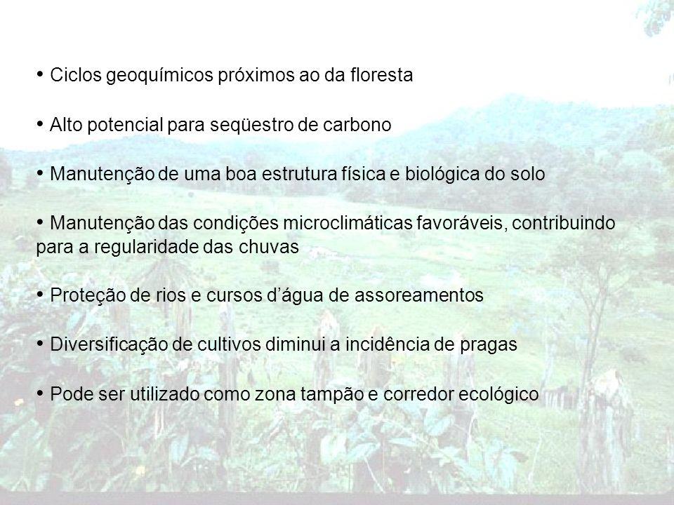Ciclos geoquímicos próximos ao da floresta