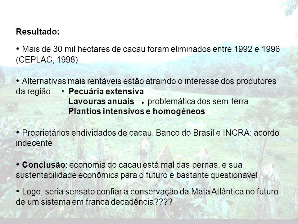 Resultado: Mais de 30 mil hectares de cacau foram eliminados entre 1992 e 1996 (CEPLAC, 1998)