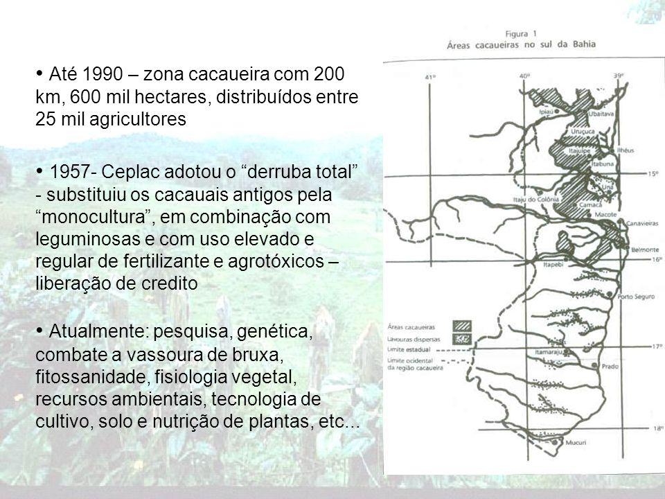 Até 1990 – zona cacaueira com 200 km, 600 mil hectares, distribuídos entre 25 mil agricultores