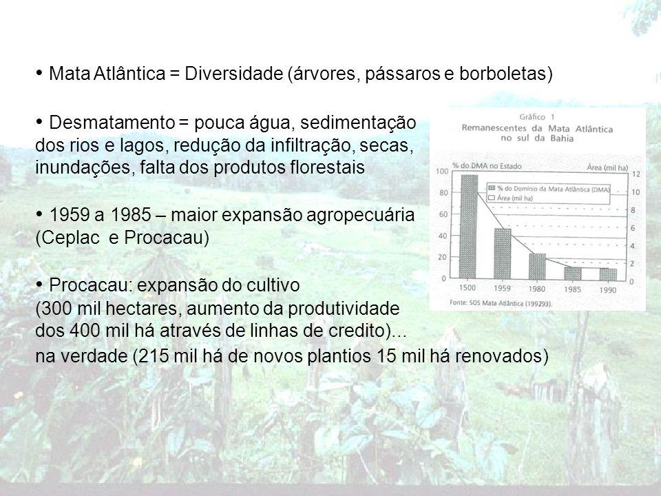 Mata Atlântica = Diversidade (árvores, pássaros e borboletas)
