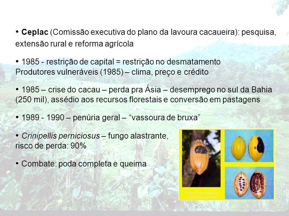 1985 - restrição de capital = restrição no desmatamento
