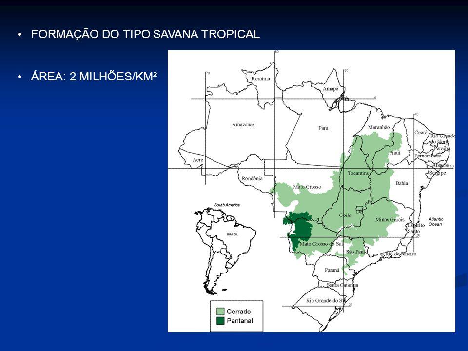 FORMAÇÃO DO TIPO SAVANA TROPICAL