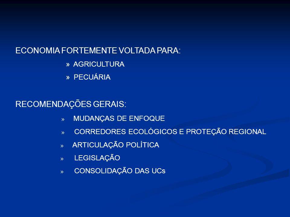 ECONOMIA FORTEMENTE VOLTADA PARA:
