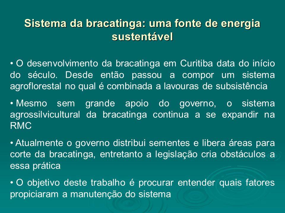 Sistema da bracatinga: uma fonte de energia sustentável