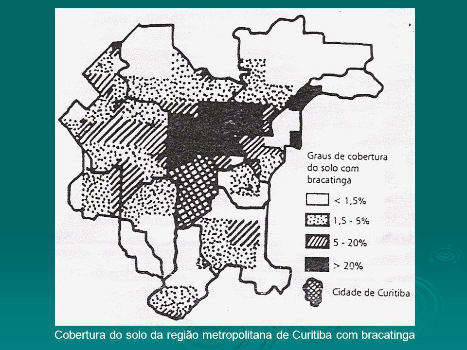 Cobertura do solo da região metropolitana de Curitiba com bracatinga