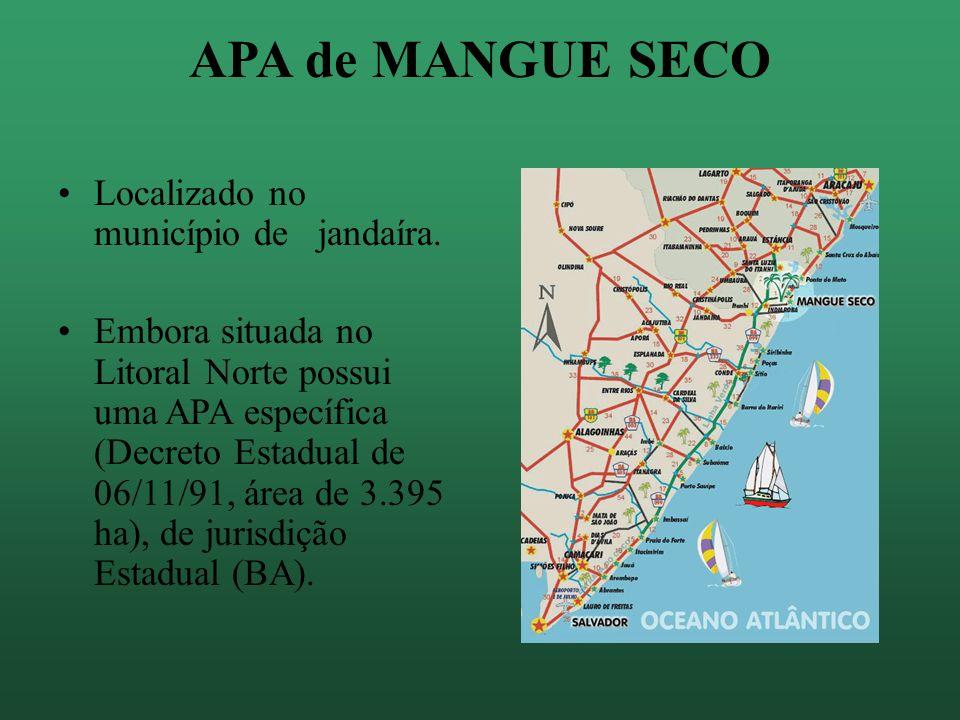 APA de MANGUE SECO Localizado no município de jandaíra.