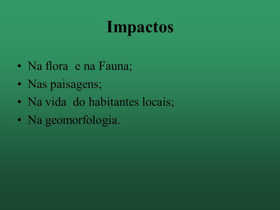 Impactos Na flora e na Fauna; Nas paisagens;
