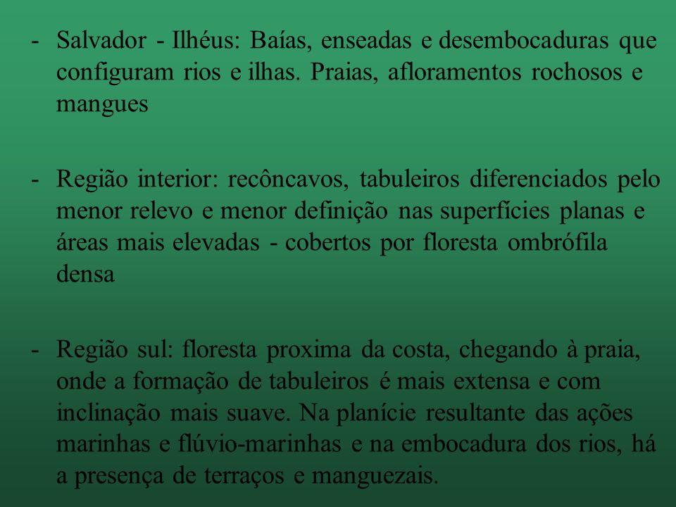 Salvador - Ilhéus: Baías, enseadas e desembocaduras que configuram rios e ilhas. Praias, afloramentos rochosos e mangues