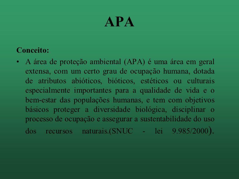 APA Conceito: