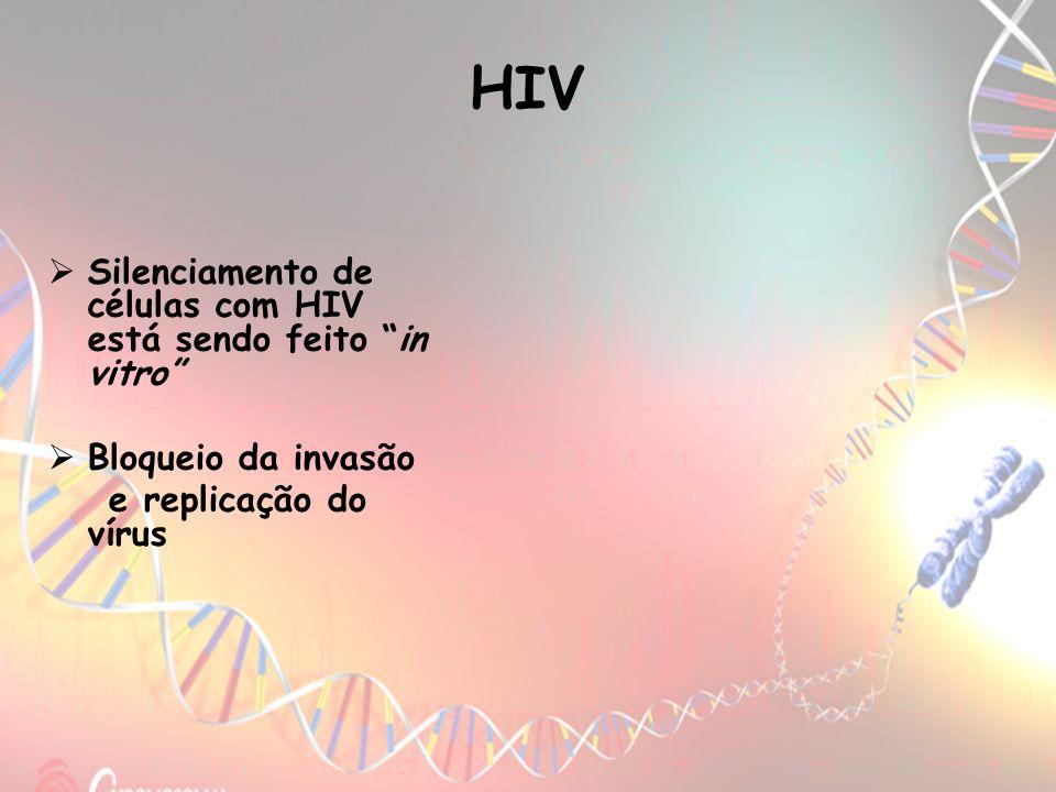 HIV Silenciamento de células com HIV está sendo feito in vitro