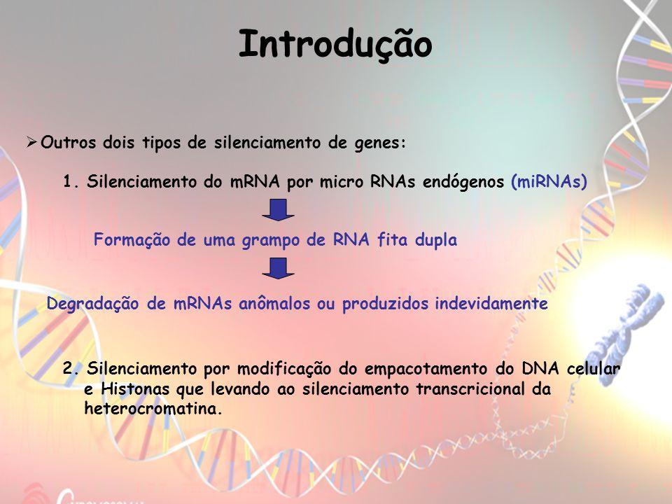 Introdução Outros dois tipos de silenciamento de genes: