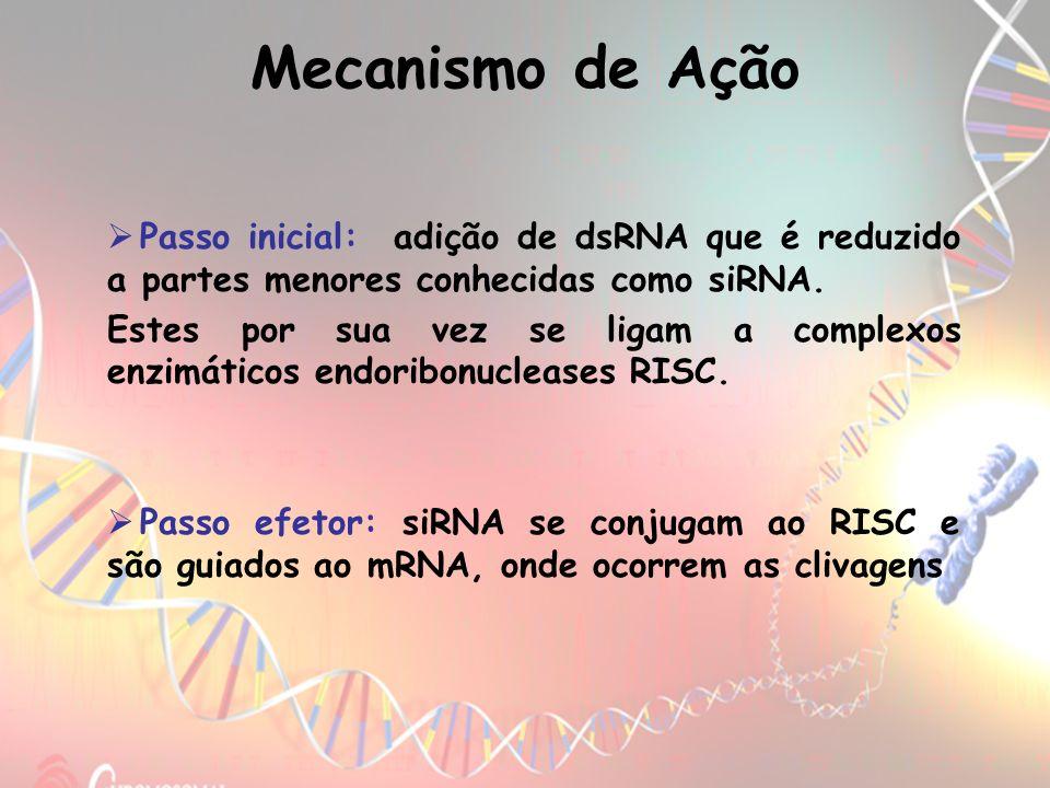 Mecanismo de AçãoPasso inicial: adição de dsRNA que é reduzido a partes menores conhecidas como siRNA.