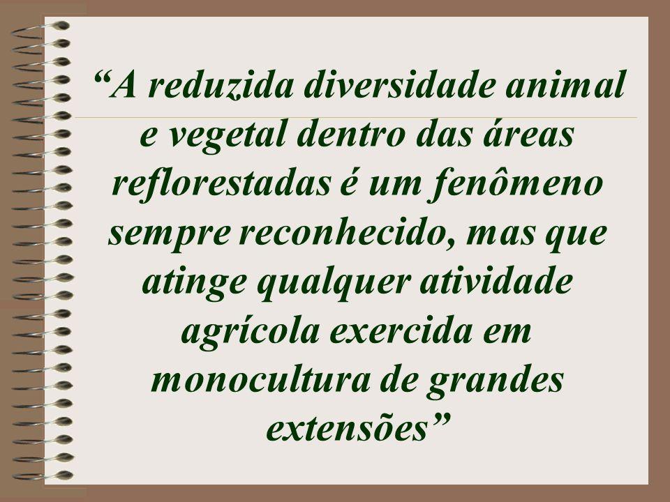 A reduzida diversidade animal e vegetal dentro das áreas reflorestadas é um fenômeno sempre reconhecido, mas que atinge qualquer atividade agrícola exercida em monocultura de grandes extensões