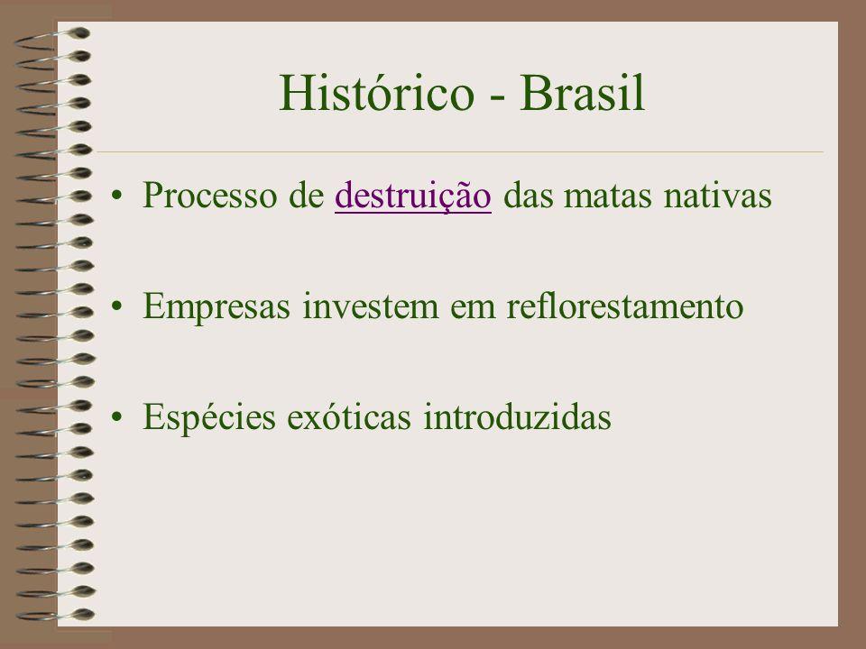 Histórico - Brasil Processo de destruição das matas nativas