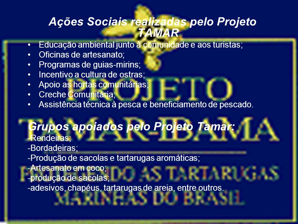 Ações Sociais realizadas pelo Projeto TAMAR