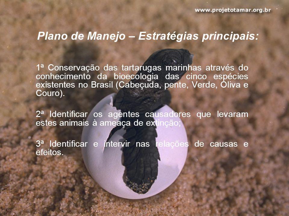 Plano de Manejo – Estratégias principais: