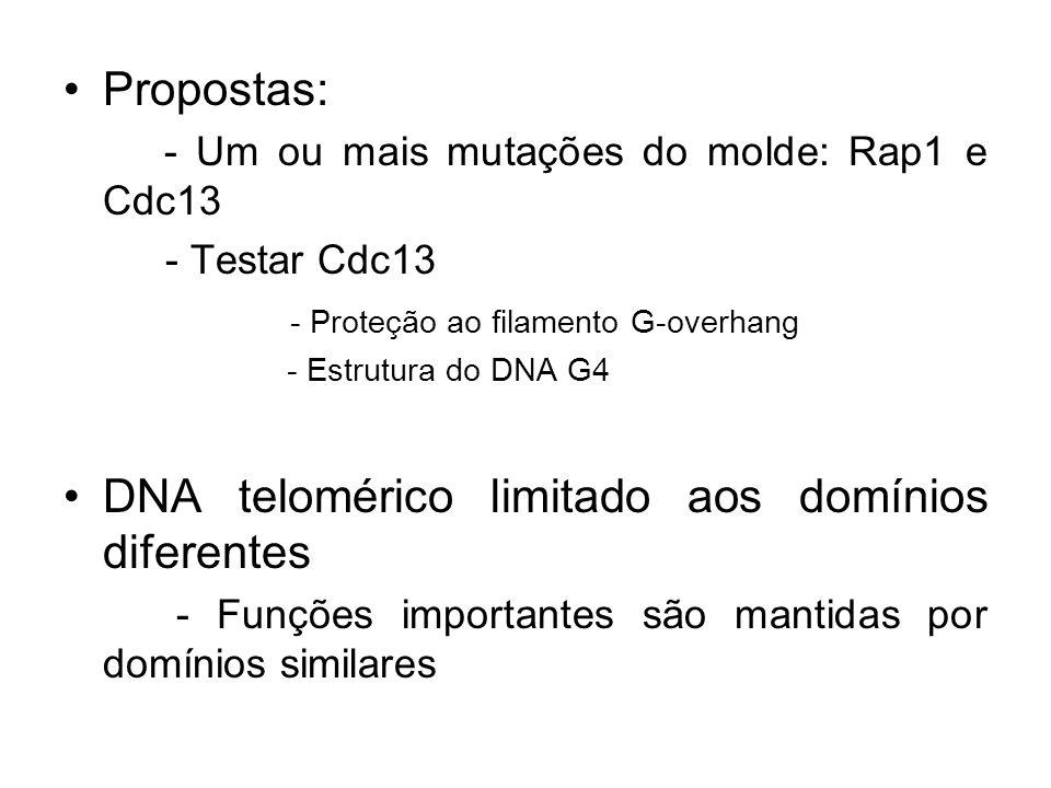 DNA telomérico limitado aos domínios diferentes