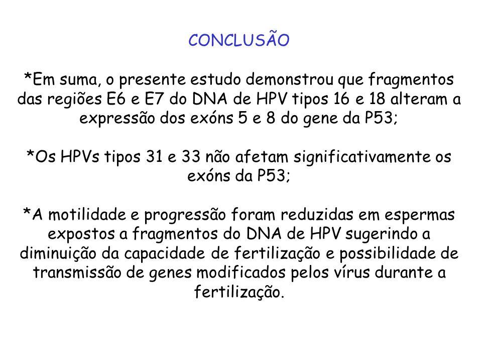 *Os HPVs tipos 31 e 33 não afetam significativamente os exóns da P53;