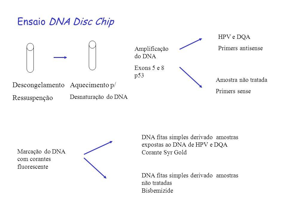 Ensaio DNA Disc Chip Descongelamento Ressuspenção Aquecimento p/