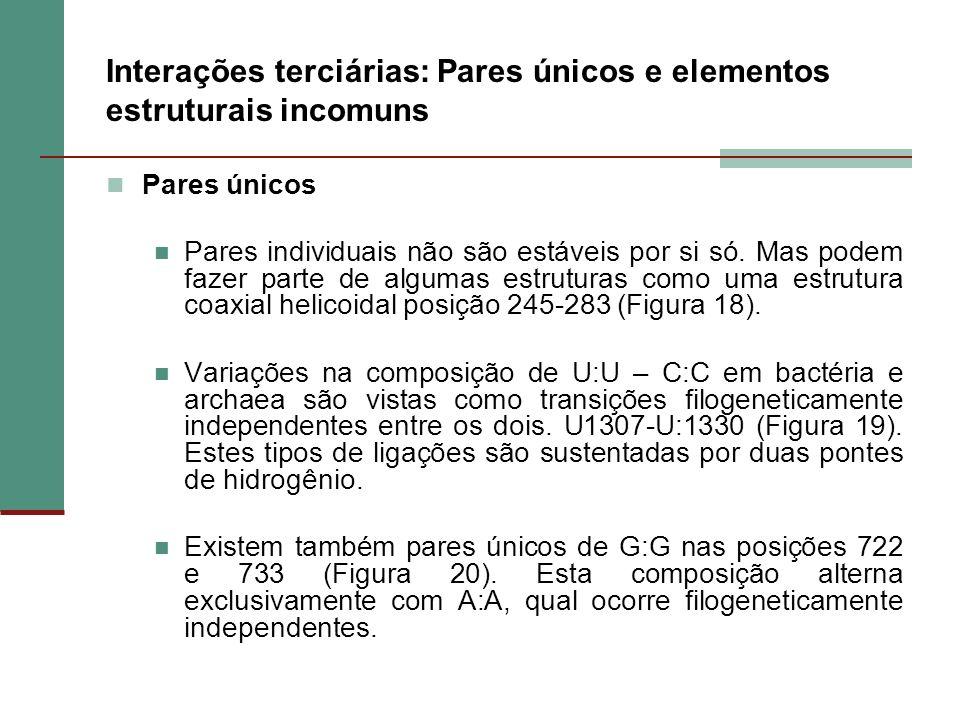 Interações terciárias: Pares únicos e elementos estruturais incomuns