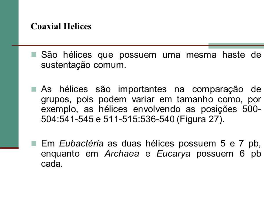Coaxial Helices São hélices que possuem uma mesma haste de sustentação comum.