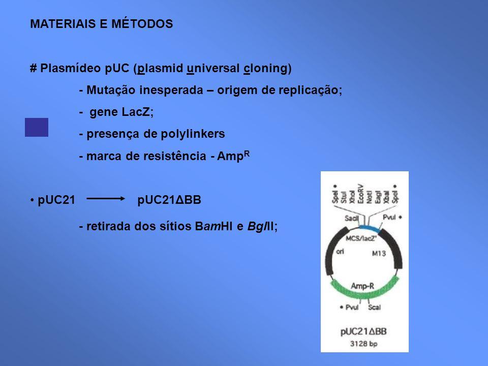 MATERIAIS E MÉTODOS # Plasmídeo pUC (plasmid universal cloning) - Mutação inesperada – origem de replicação;
