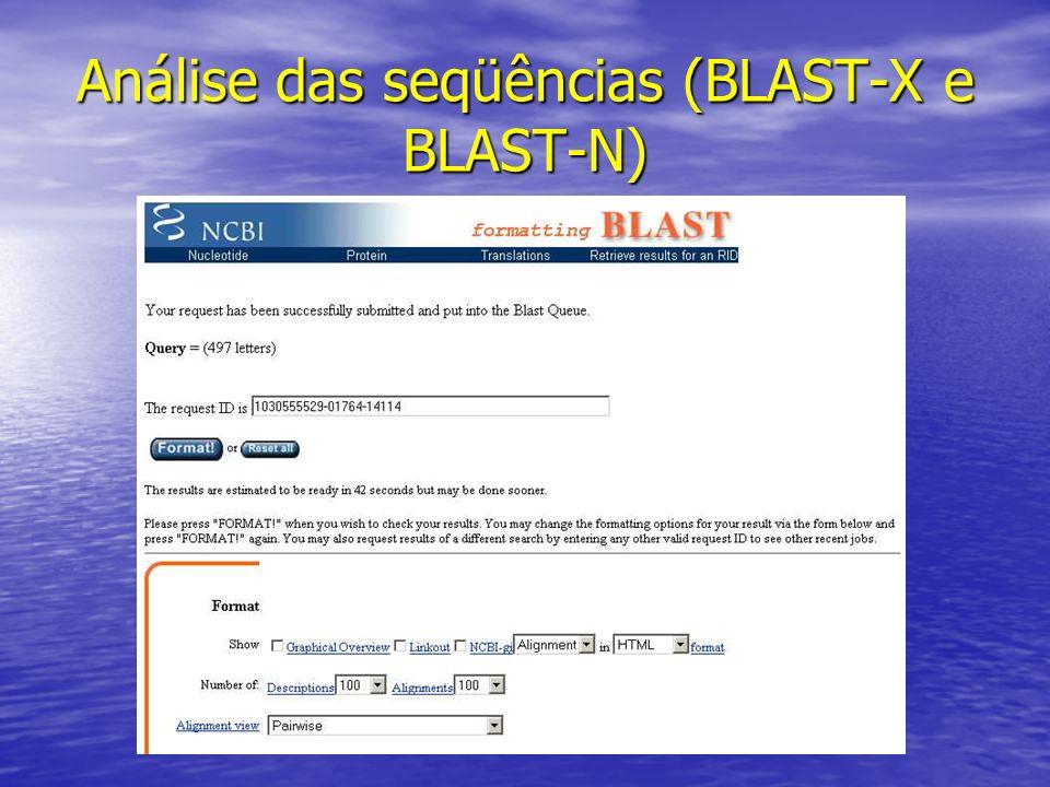Análise das seqüências (BLAST-X e BLAST-N)