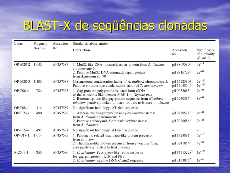 BLAST-X de seqüências clonadas