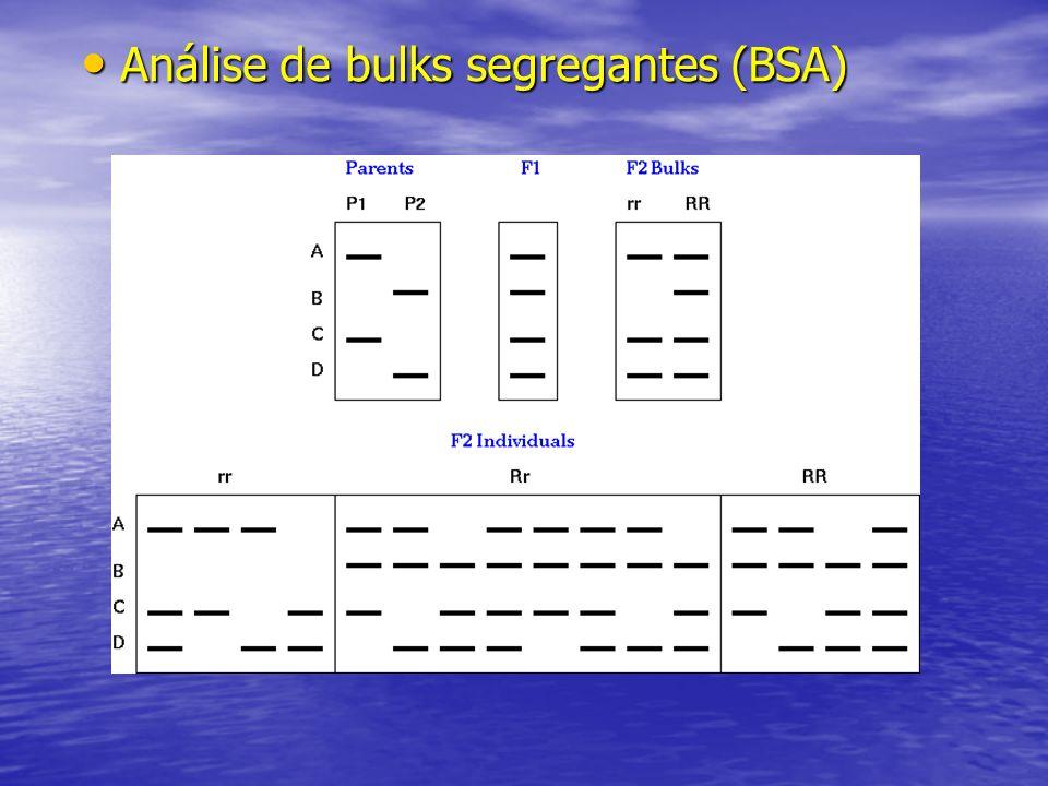 Análise de bulks segregantes (BSA)