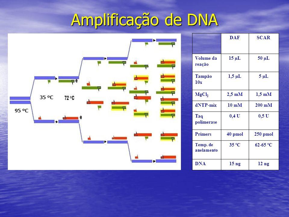 Amplificação de DNA DAF SCAR Volume da reação 15 µL 50 µL Tampão 10x