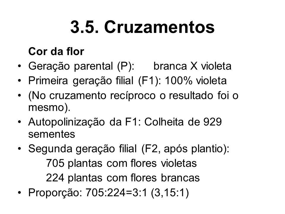3.5. Cruzamentos Cor da flor Geração parental (P): branca X violeta