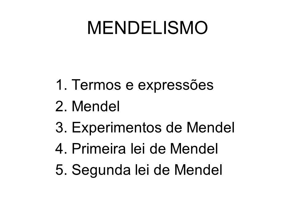 MENDELISMO 1. Termos e expressões 2. Mendel 3. Experimentos de Mendel