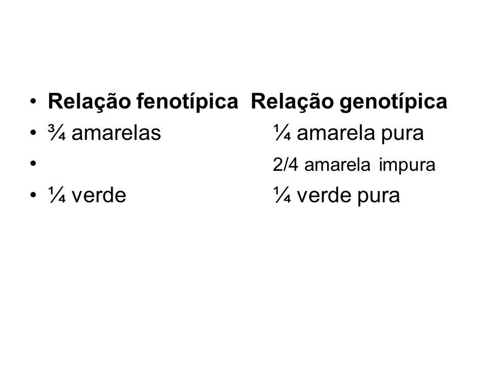 Relação fenotípica Relação genotípica