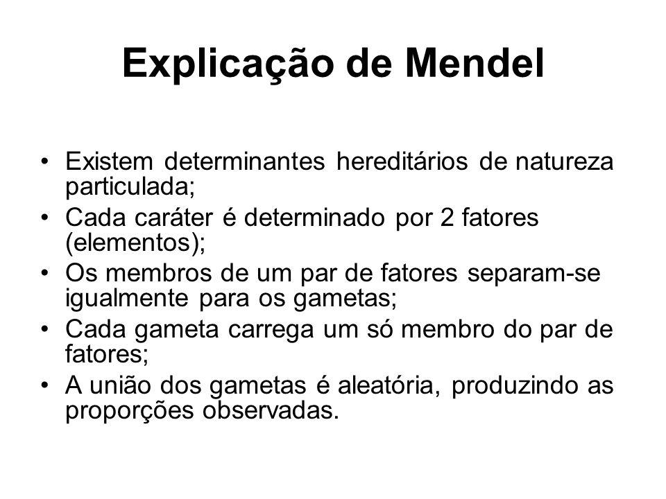 Explicação de Mendel Existem determinantes hereditários de natureza particulada; Cada caráter é determinado por 2 fatores (elementos);
