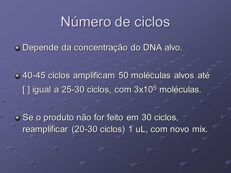 Número de ciclos Depende da concentração do DNA alvo.