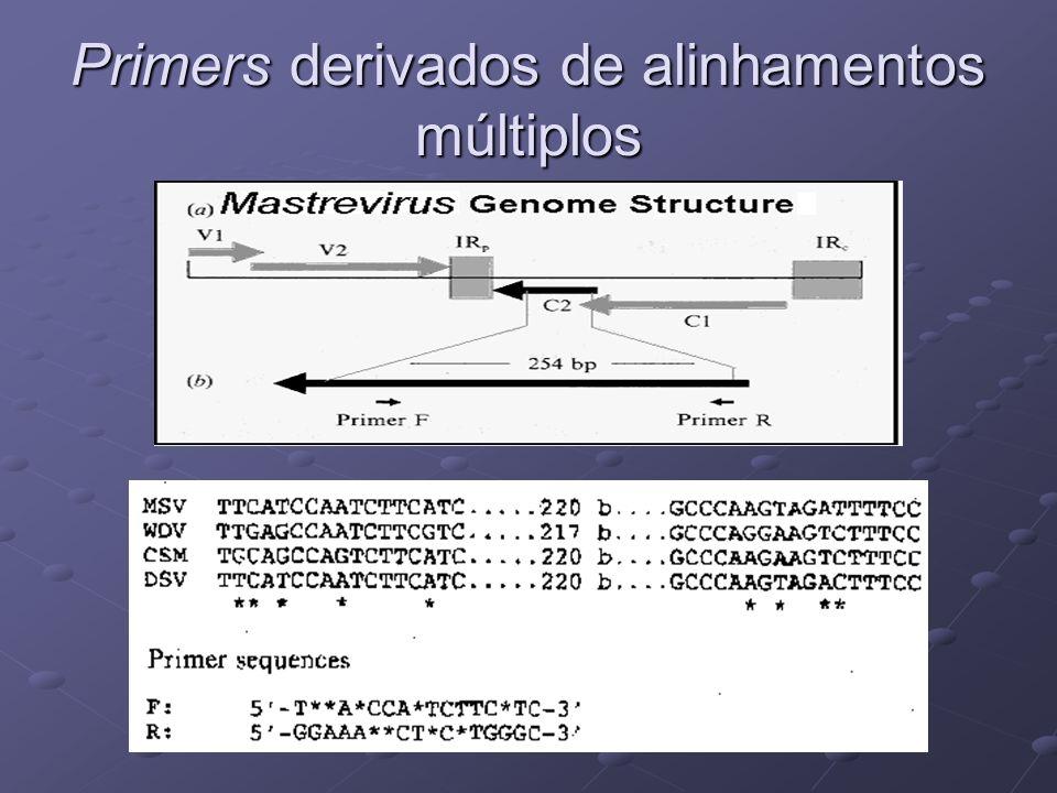 Primers derivados de alinhamentos múltiplos