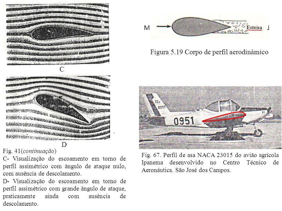 Figura 5.19 Corpo de perfil aerodinâmico
