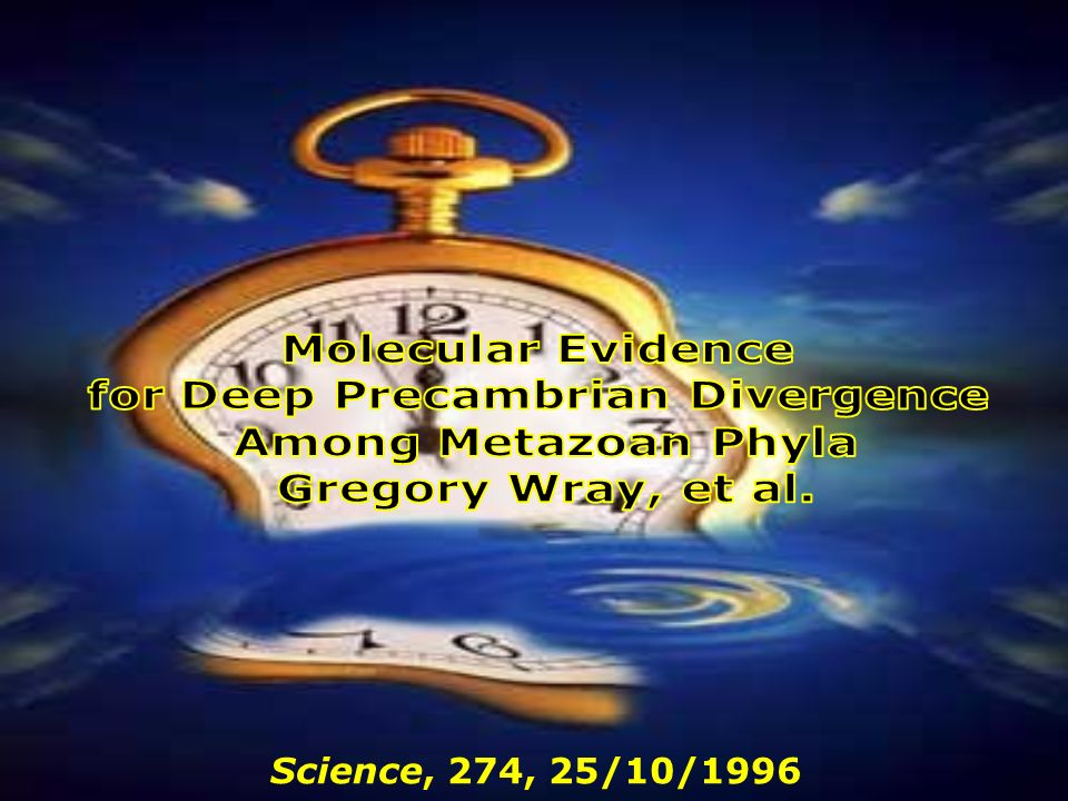 for Deep Precambrian Divergence