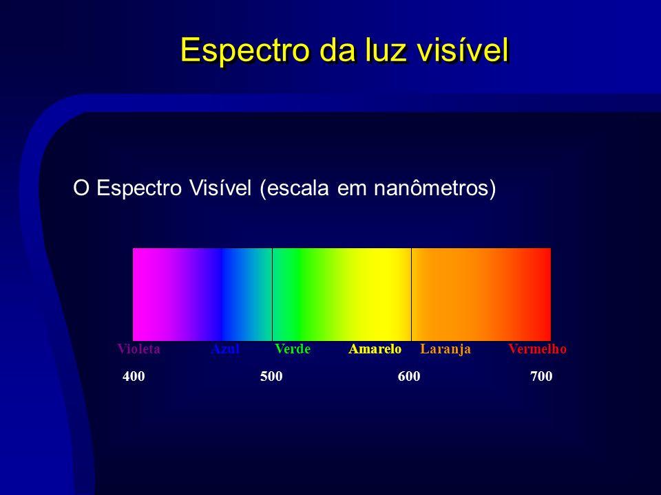 Espectro da luz visível