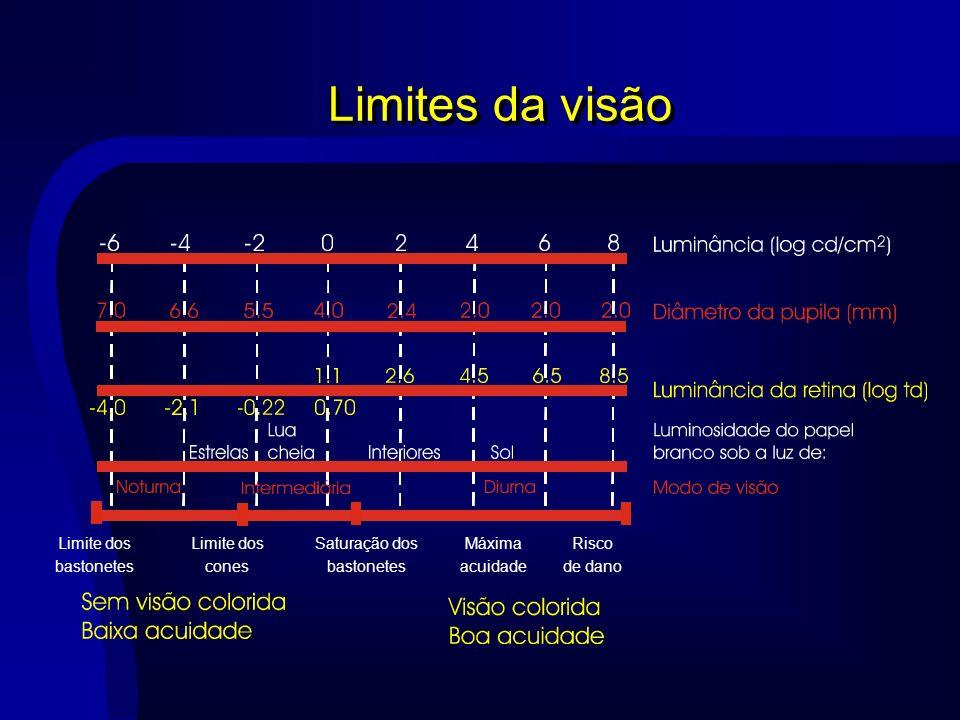 Limites da visão Limite dos bastonetes cones Saturação dos Máxima