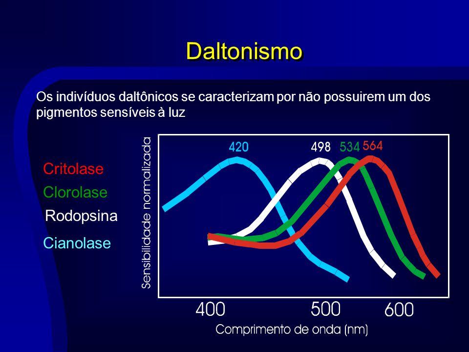 Daltonismo Critolase Clorolase Rodopsina Cianolase