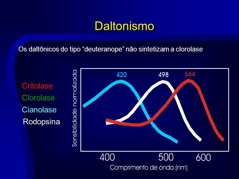 Daltonismo Critolase Clorolase Cianolase Rodopsina